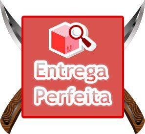 ENTREGA PERFEITA