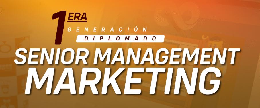 senior management marketing