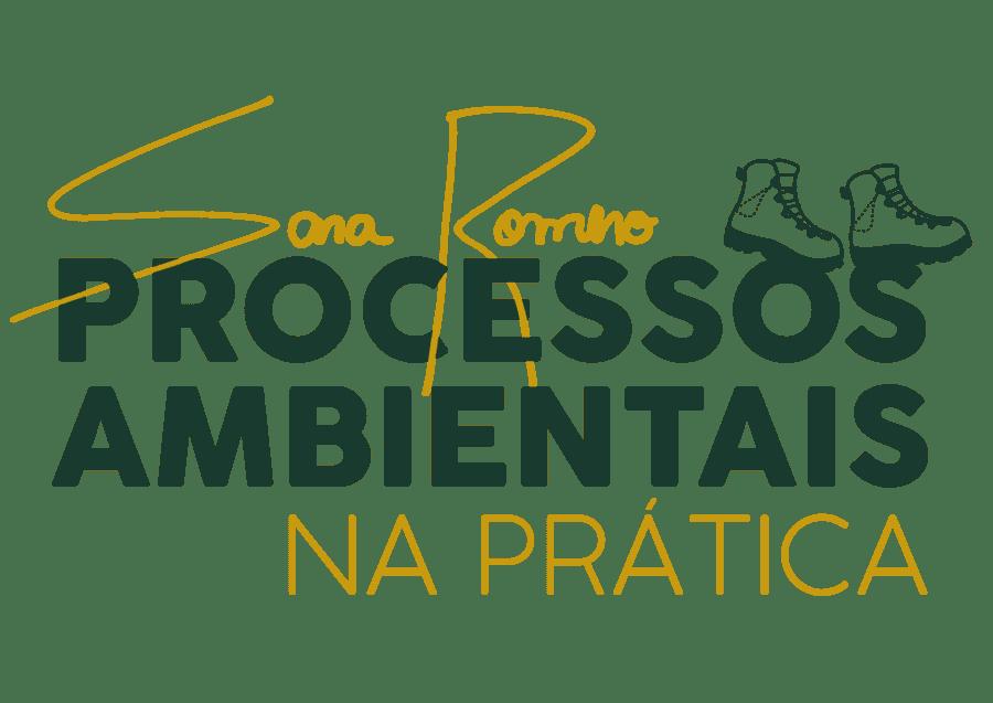 Processos Ambientais na Prática Sara Romero